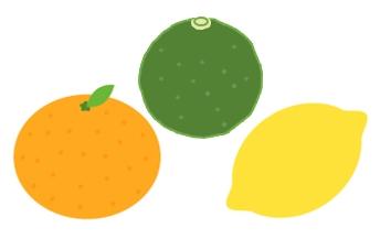 かぼすとみかんとレモン