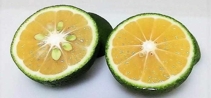 かぼすの品種