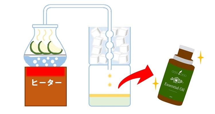 カボス精油の抽出方法